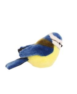 bluetitbird_asseen_2